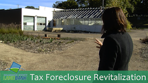 Tax Foreclosure Revitalization